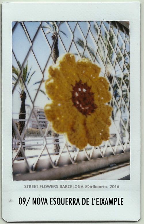 09_DISTRITO+2+STREET+FLOWERS+BARNA-9