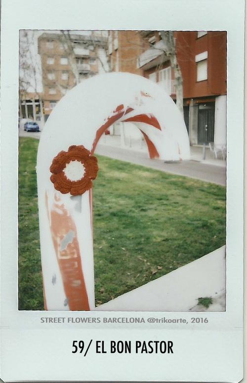 59_DISTRITO+9+STREET+FLOWERS+BARNA-59